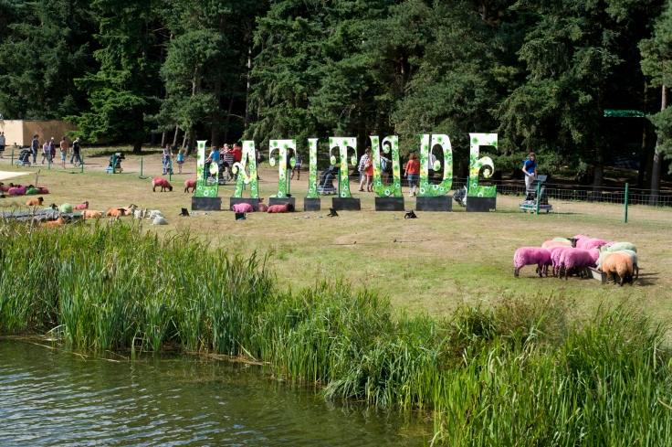 The Latitude Festival arena in 2009 (Photograph: Andi Sapey)