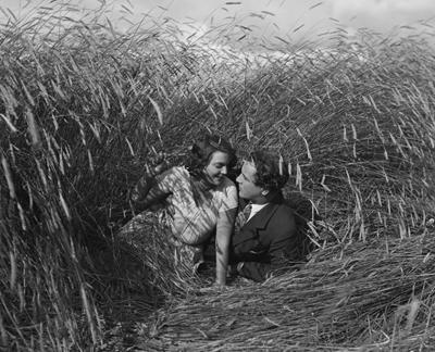 Rågens rike (1929)