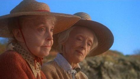 Lillian Gish and Bette Davis in The Whales of August (1987)