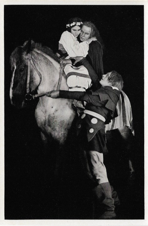 The Stone Rider (1923)