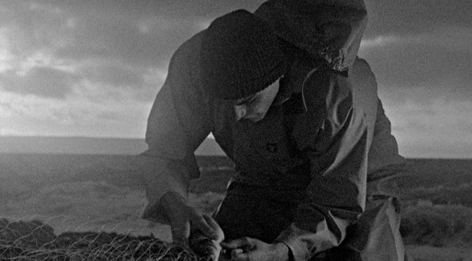 Bait review: Silent landscapes, angry voices