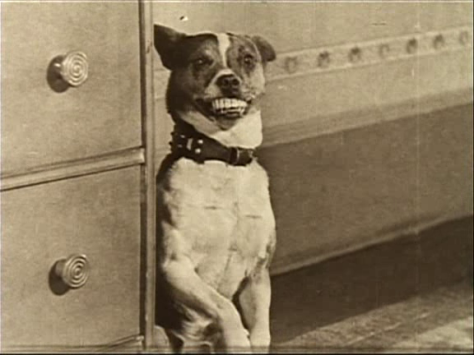 Mighty Like a Moose (1926)